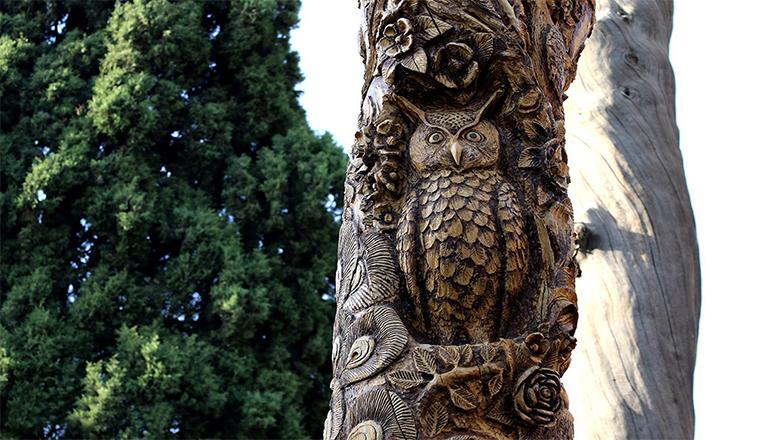 طرح جغد بر روی درخت خشک شده باغ جهان نما