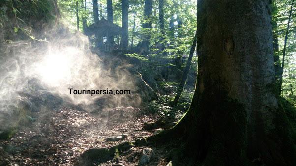 Namakabrud Forest
