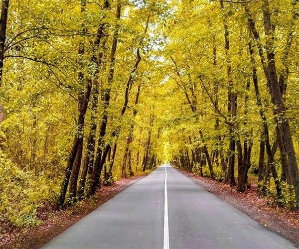 Safra Basteh Forest Park in Gilan province