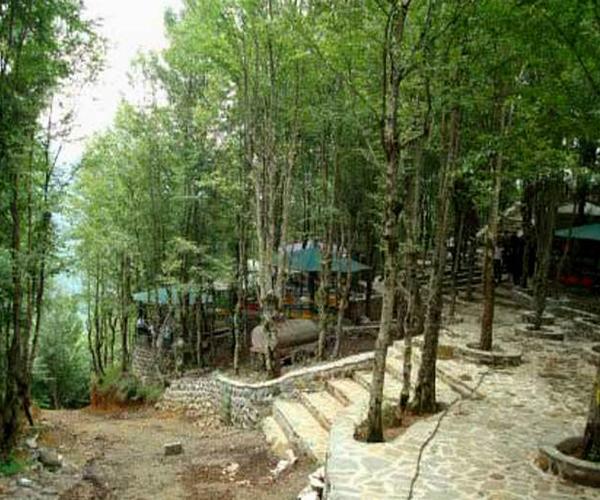 بوستان جنگلی صفارود در رامسر
