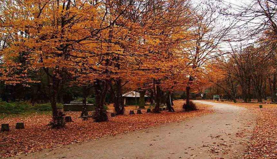 پارک سی سنگان در استان مازندران