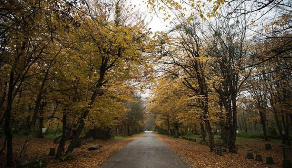 پارک سی سنگان مازندران