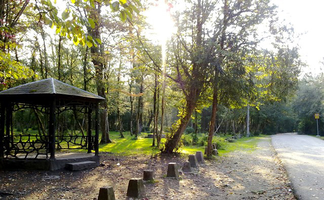 پارک جنگلی سی سنگان در مازندران