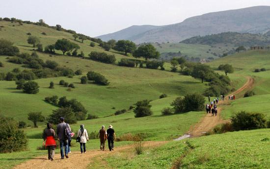 جاده روستای داماش گیلان